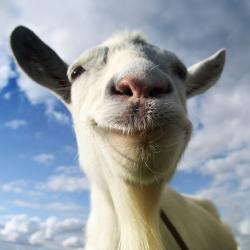لوگو Goat Simulator