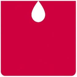 لوگو Basque Country blood donors