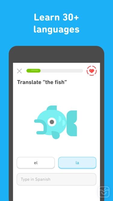 تصاویر Duolingo