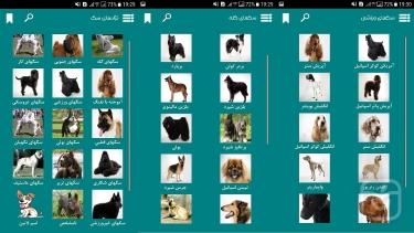تصاویر نژادهای سگ