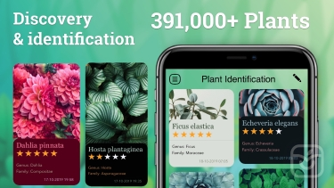 تصاویر Plant Identification: Plant ID