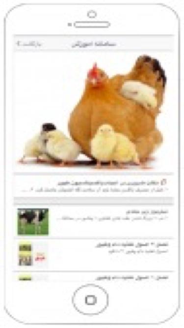 تصاویر ویسا | پویش دانشجویی حمایت از حقوق حیوانات