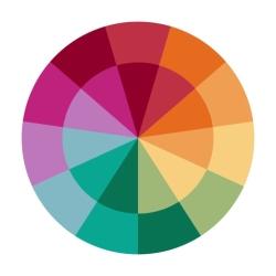 لوگو A Color Story