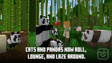 تصاویر Minecraft|ماینکرفت