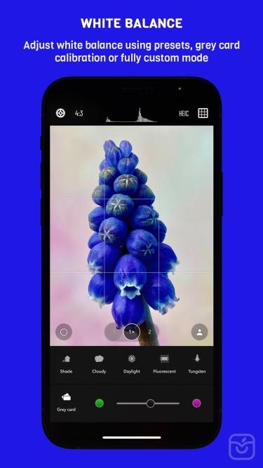 تصاویر Chromatica camera