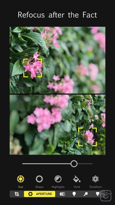 تصاویر  + Focos