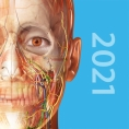 Human Anatomy Atlas 2021