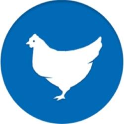 لوگو بیماری های طیور