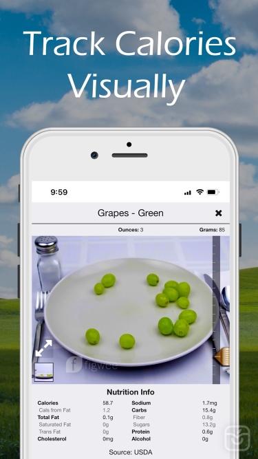 تصاویر Figwee Visual Food Diary