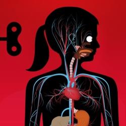 لوگو The Human Body by Tinybop