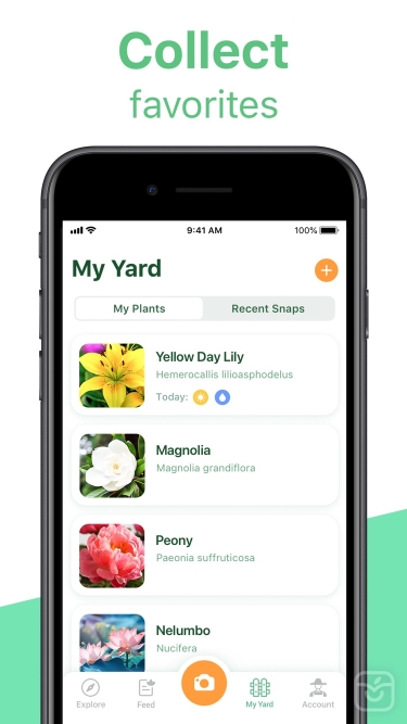 تصاویر NatureID: Plant Identification