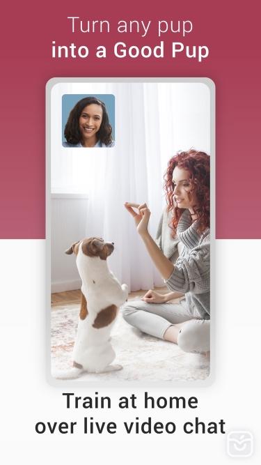 تصاویر GoodPup: Dog Training at Home