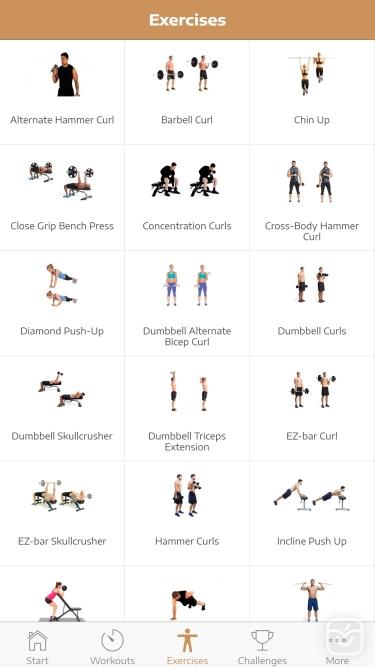تصاویر Huge Arms Workout Guide